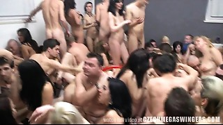 Monster Fuckfest Greater quantity than 100 People in one Room