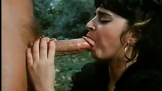Sexy Cougars Affair